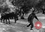Image of Battle of Monte Cassino Italy, 1944, second 7 stock footage video 65675046250
