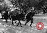 Image of Battle of Monte Cassino Italy, 1944, second 9 stock footage video 65675046250