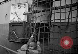 Image of USS Samuel Chase and Normandy invasion on D-Day France, 1944, second 10 stock footage video 65675046331