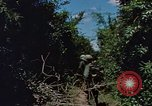 Image of Marine Forces Vietnam, 1967, second 2 stock footage video 65675046346