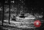 Image of Battle of Gomel Russia, 1943, second 5 stock footage video 65675046482