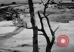 Image of Captured Japanese Airfield Munda New Georgia Solomon Islands, 1943, second 7 stock footage video 65675046492