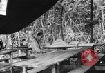 Image of confession and mass Bougainville Island Papua New Guinea, 1944, second 12 stock footage video 65675046499