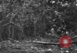 Image of fighting dog Bougainville Island Papua New Guinea, 1944, second 9 stock footage video 65675046502