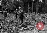 Image of 145th Infantry Regiment Solomon Islands, 1944, second 10 stock footage video 65675046506