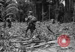 Image of 145th Infantry Regiment Solomon Islands, 1944, second 11 stock footage video 65675046506