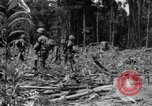 Image of 145th Infantry Regiment Solomon Islands, 1944, second 12 stock footage video 65675046506