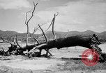 Image of Atomic bomb Japan, 1945, second 16 stock footage video 65675046528