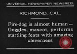 Image of fire dog Richmond California USA, 1930, second 1 stock footage video 65675046582