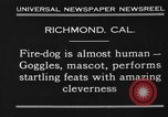 Image of fire dog Richmond California USA, 1930, second 3 stock footage video 65675046582