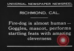 Image of fire dog Richmond California USA, 1930, second 4 stock footage video 65675046582