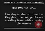 Image of fire dog Richmond California USA, 1930, second 5 stock footage video 65675046582