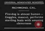 Image of fire dog Richmond California USA, 1930, second 7 stock footage video 65675046582