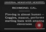Image of fire dog Richmond California USA, 1930, second 10 stock footage video 65675046582