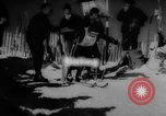 Image of skiing United States USA, 1962, second 1 stock footage video 65675046642