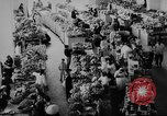 Image of civil life Vietnam, 1962, second 9 stock footage video 65675046654