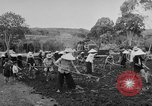 Image of civil life Vietnam, 1962, second 9 stock footage video 65675046655