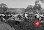 Image of civil life Vietnam, 1962, second 10 stock footage video 65675046655