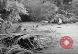 Image of damage due to shelling Vietnam, 1962, second 1 stock footage video 65675046658