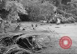 Image of damage due to shelling Vietnam, 1962, second 3 stock footage video 65675046658