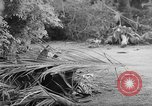 Image of damage due to shelling Vietnam, 1962, second 4 stock footage video 65675046658