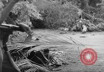 Image of damage due to shelling Vietnam, 1962, second 5 stock footage video 65675046658