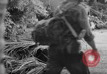 Image of damage due to shelling Vietnam, 1962, second 6 stock footage video 65675046658