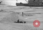 Image of Admiral Byrd's Antarctic III expedition Antarctica, 1941, second 1 stock footage video 65675046681