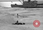 Image of Admiral Byrd's Antarctic III expedition Antarctica, 1941, second 3 stock footage video 65675046681