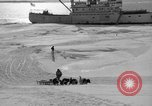 Image of Admiral Byrd's Antarctic III expedition Antarctica, 1941, second 4 stock footage video 65675046681