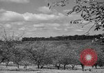 Image of cherry festival Traverse City Michigan USA, 1939, second 3 stock footage video 65675046712