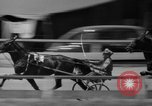 Image of trotting Goshen Egypt, 1941, second 9 stock footage video 65675046745
