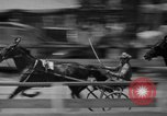 Image of trotting Goshen Egypt, 1941, second 10 stock footage video 65675046745