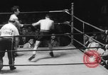 Image of golden gloves boxing New York City USA, 1950, second 7 stock footage video 65675046785