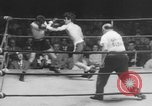 Image of golden gloves boxing New York City USA, 1950, second 9 stock footage video 65675046785