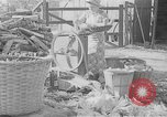 Image of corn sheller United States USA, 1945, second 1 stock footage video 65675046824