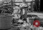 Image of corn sheller United States USA, 1945, second 2 stock footage video 65675046824