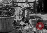 Image of corn sheller United States USA, 1945, second 5 stock footage video 65675046824