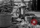 Image of corn sheller United States USA, 1945, second 6 stock footage video 65675046824