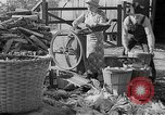 Image of corn sheller United States USA, 1945, second 11 stock footage video 65675046824
