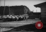 Image of Japanese household Manchuria China, 1959, second 4 stock footage video 65675046834