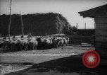 Image of Japanese household Manchuria China, 1959, second 5 stock footage video 65675046834