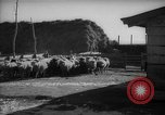 Image of Japanese household Manchuria China, 1959, second 6 stock footage video 65675046834