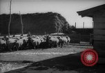 Image of Japanese household Manchuria China, 1959, second 7 stock footage video 65675046834