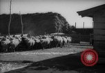 Image of Japanese household Manchuria China, 1959, second 8 stock footage video 65675046834