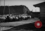 Image of Japanese household Manchuria China, 1959, second 9 stock footage video 65675046834