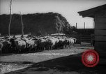 Image of Japanese household Manchuria China, 1959, second 10 stock footage video 65675046834