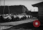 Image of Japanese household Manchuria China, 1959, second 11 stock footage video 65675046834