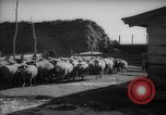 Image of Japanese household Manchuria China, 1959, second 12 stock footage video 65675046834