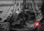 Image of weighing catch of fish Gloucester Massachusetts USA, 1935, second 3 stock footage video 65675046871